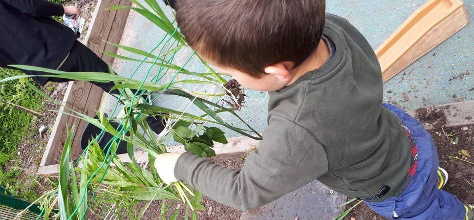 Altrincham nursery embraces Outdoor Classroom Day