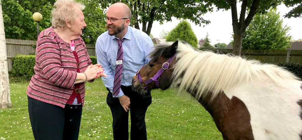 Godalming care home saddles up to welcome new housemates