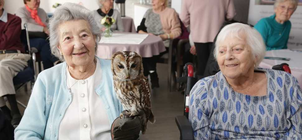 Bird is the word! Halstead care home residents spread their wings to celebrate the best of British birds