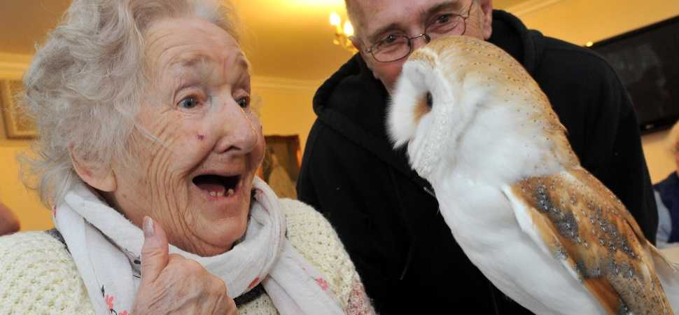 Thorrington care home residents take birdwatch weekend to the nest level