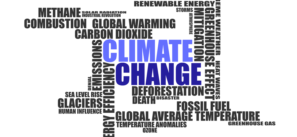Climate change and how it will impact UK businesses