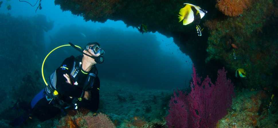 Blue Bay Travel introduces their very own Dive Expert