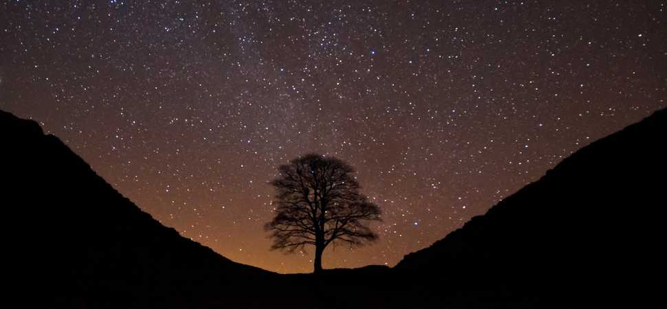 Celebrate International Dark Sky Week with Northumberland National Park
