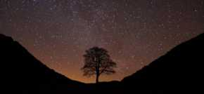Northumberland is home to some of the most pristine night skies in Europe