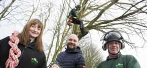 Tree-mendous training benefits Peterlee start-up