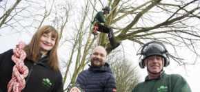 Tree-mendous training benefits Peterlee start-up