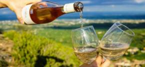 Climate Change The French Wine Disaster & Beyond