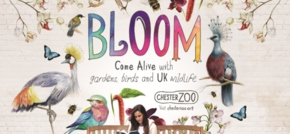 Front launches new Bloom campaign for Chester Zoo