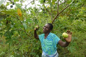 Danbro Help Their Staff Get Their Five A Day By Growing Trees In Africa