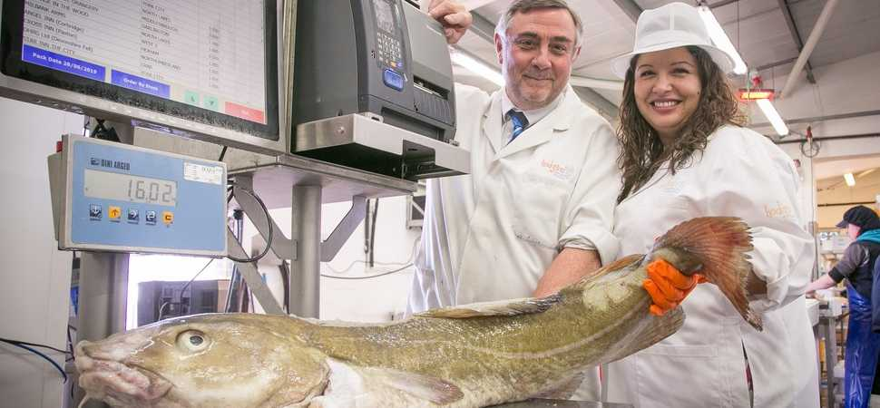 Hodgson Fish is making waves thanks to £28k grant funding
