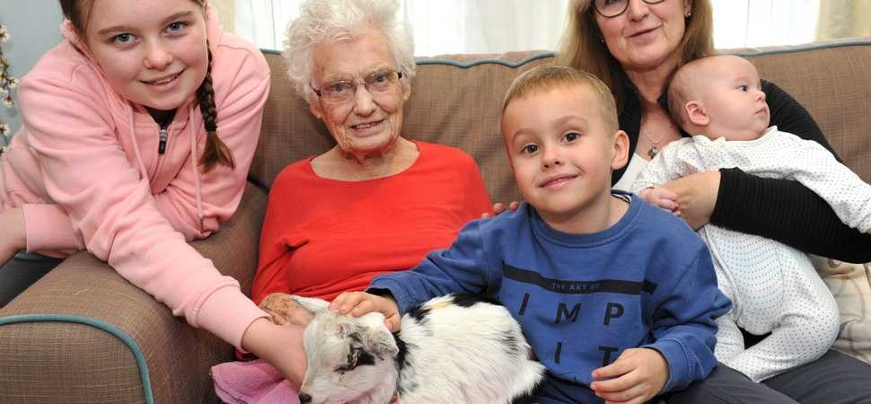 Kidding around  Halstead care home welcomes a host of furry friends