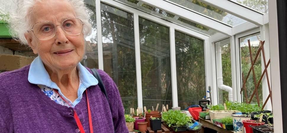 Deddington care home residents revive old greenhouse