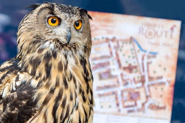 Chester Retailers report surge in footfall as Hoot's Route opens to the public