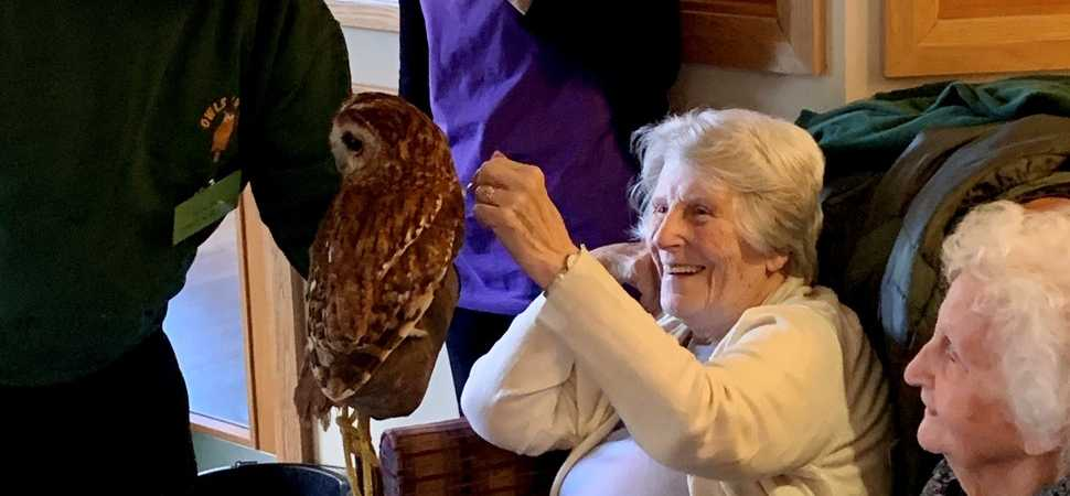 Stansted care home residents take birdwatch weekend to the nest level