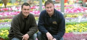 Creative garden centres blossoming