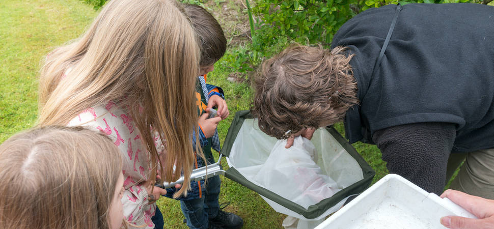 Outdoor education charity launches live fieldwork lessons