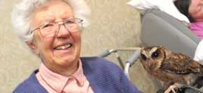 Ware care home residents take birdwatch weekend to the nest level