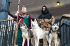 Packs of city visitors take on Chester's Wolf Quest mystery challenge