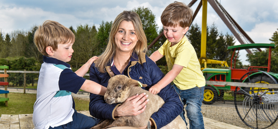 Pop-up farm brings lambs, piglets and alpacas to Lightwater Valley for half-term