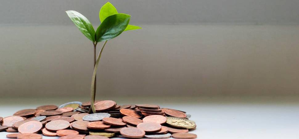 Year Of Growth For Avamore Capital