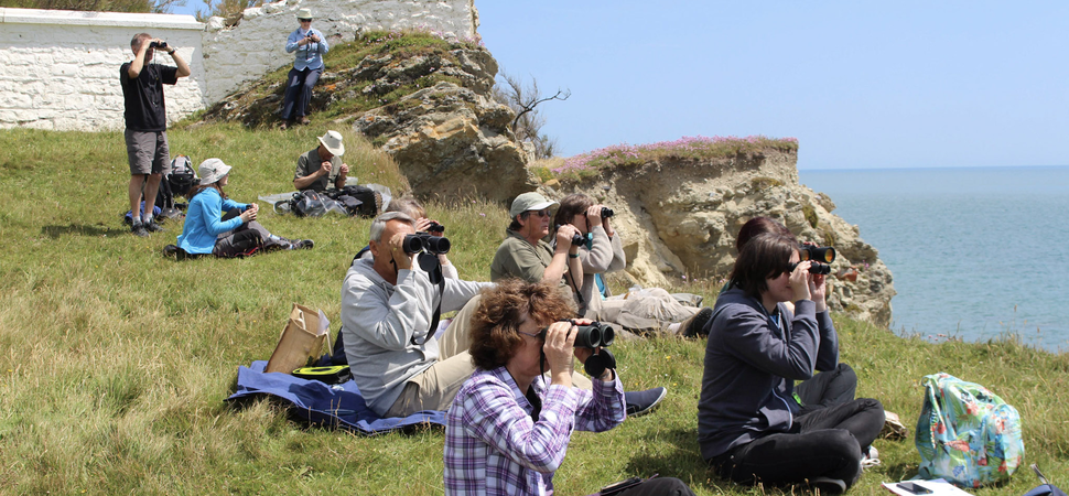 UK-based citizen scientist numbers to be boosted by new marine eco-courses
