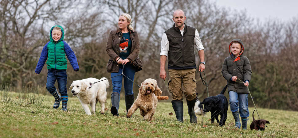 Pembrokeshire dogs in for a treat with luxury expansion
