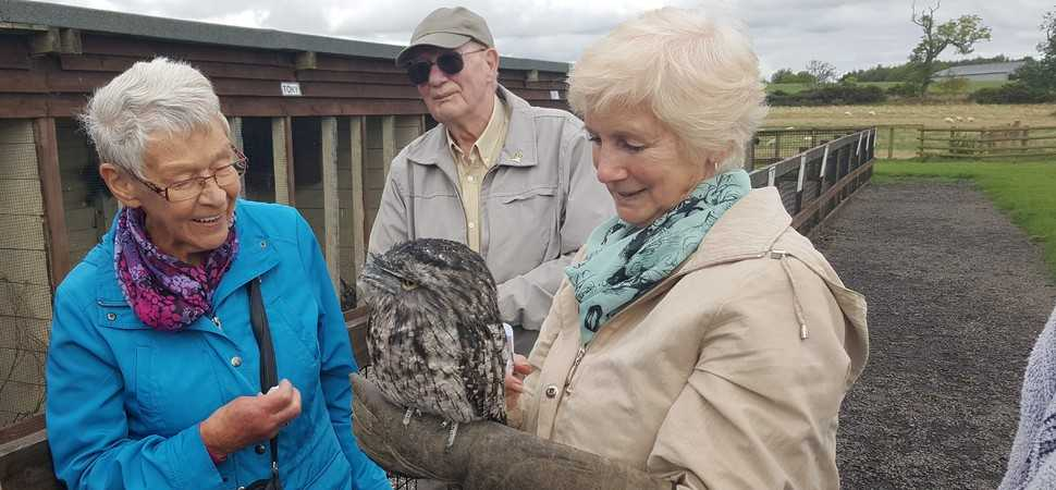 Farm attraction is providing fun and friendship to dementia sufferers
