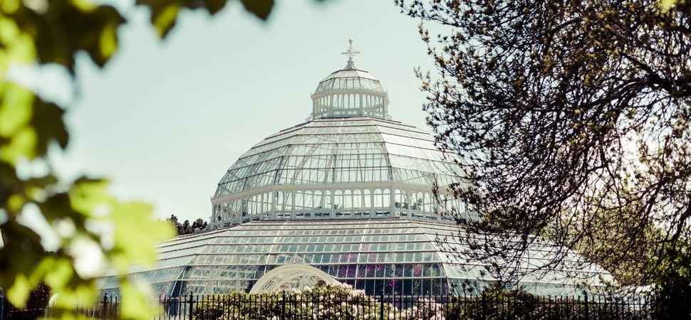 Palm House celebrates on-going support as part of Flourish at Fifteen campaign