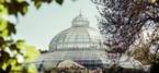 Palm House celebrates support as part of Flourish at Fifteen campaign