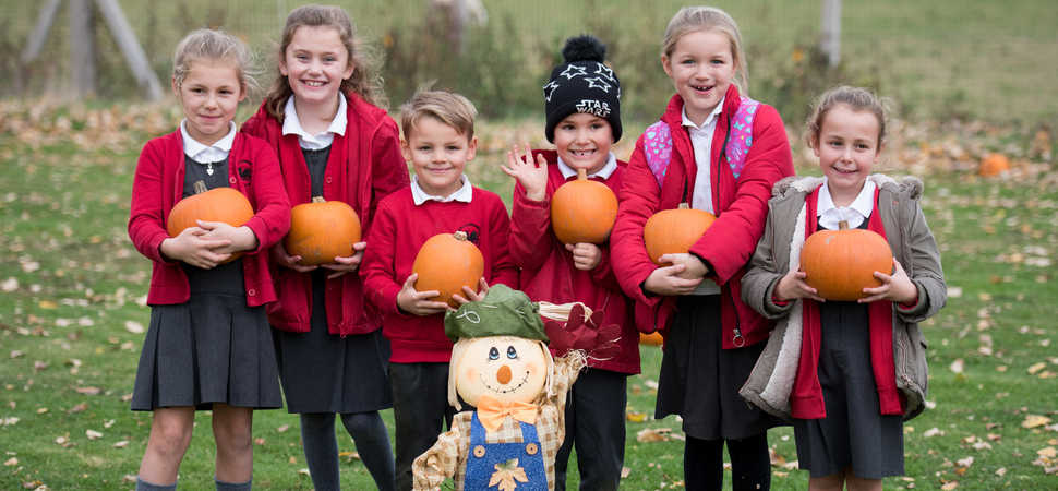 Caulmert provides pumpkins for primary schools party