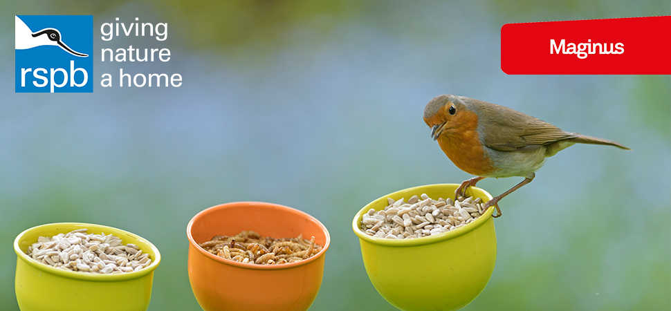 RSPB flies to new heights with omnichannel capability