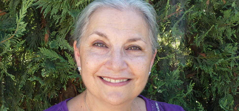 New book by Dr Diane Speier bridges a glaring literary gap in postnatal support