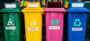 How Schools Can Combat Waste