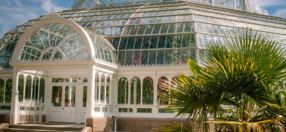Sefton Park Palm House on the hunt for new volunteers to work at iconic venue