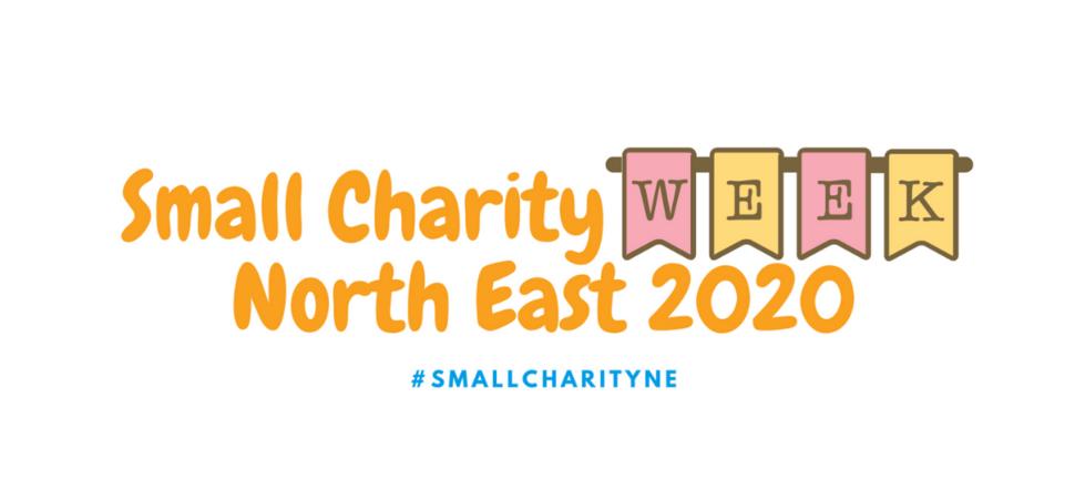 Regional VCSE partners create Small Charity Week North East
