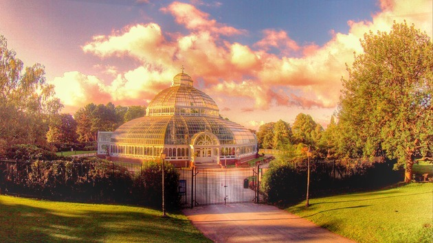 Sefton Park Palm House to host free Sunday concerts