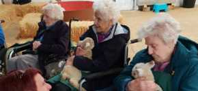 Theres a spring in the step of Deddington care home residents after farm visit