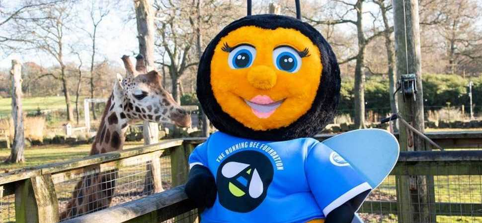 Run wild and BEE at Knowsley in 2020