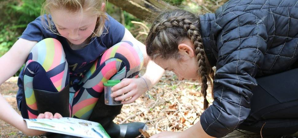 UK charity to broadcast live nature lessons for primary school pupils