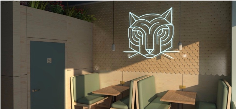 Work starts at Tiger Rock Hawker's new city centre venue