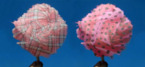 The UK's 1st Willy Wonka-esque Candy Floss