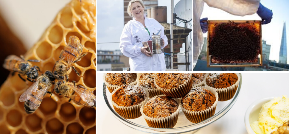 London's Most Sustainable Cookery School Launches New Honey Masterclass