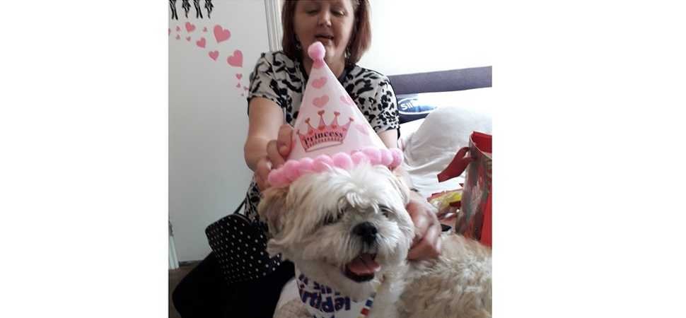 Pawsitively swell party for mans best friend at Plymouth care home
