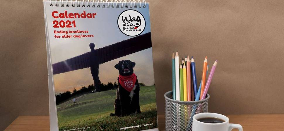Dog owning volunteers stand in friendship to support charity
