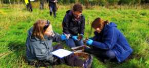 £1.64 million project boosts data recording of Britains unloved wildlife species